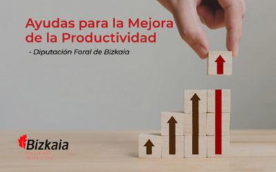 Ayudas de la DFB para la Mejora de la productividad